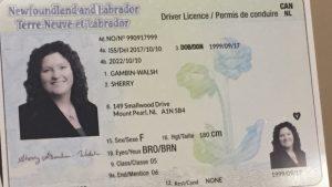 如何考到加拿大纽芬兰驾照